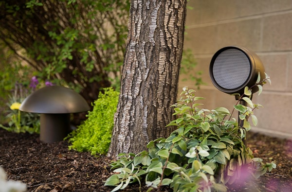 garden sub and speaker in the group