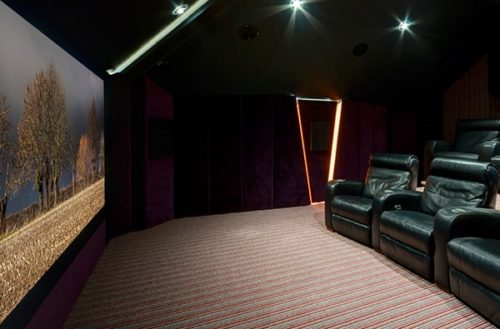 cambridgeshire cinema demo