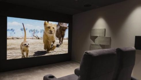 The lion king on screen on a home cinema